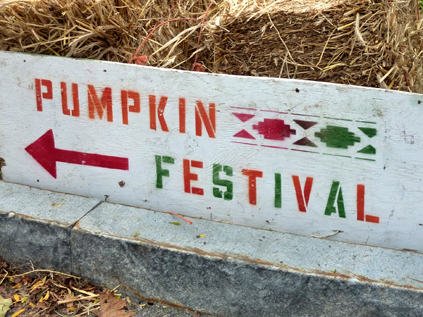 october upstate pumpkins fall festival apple picking