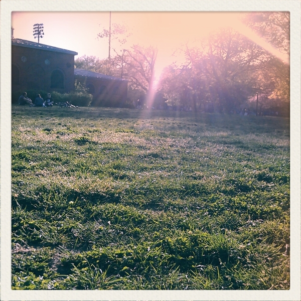 grass McCarren Park brooklyn