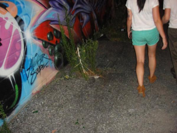 graffiti Williamsburg Brooklyn summer