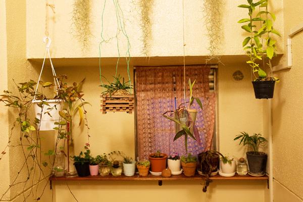 hanayo-tenko-the-selby-japanese-apartment-tokyo (3)